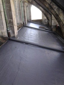 Waterproofing roof at Promax Coating Systems and Roofing
