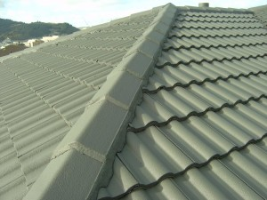 Monier Tiles by Promax Coating Systems and Roofing